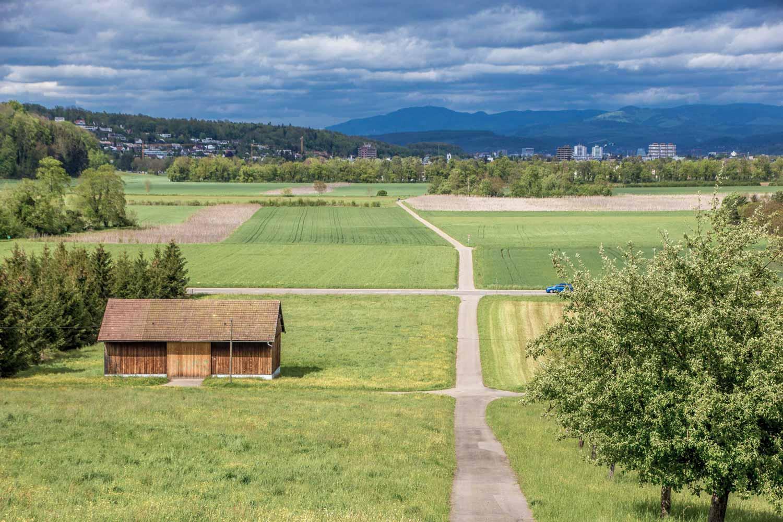 Landschaft bei Aesch BL